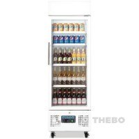 Glasdeur Koelkast Polar DM075